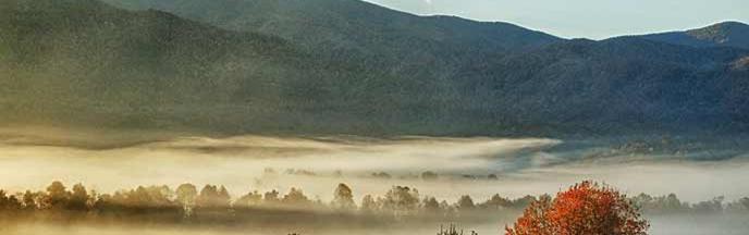 cades-cove-fog